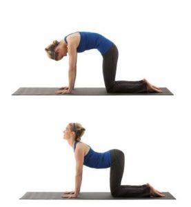 cause e rimedi del mal di schiena. esercizio del cammello